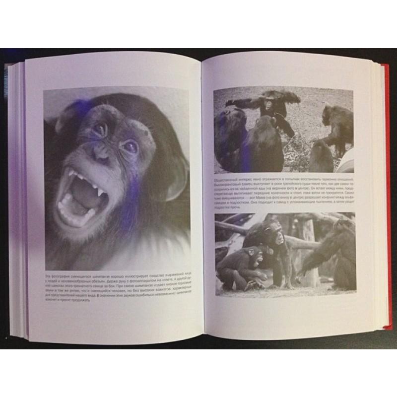 Истоки морали. В поисках человеческого у приматов (фото 10)