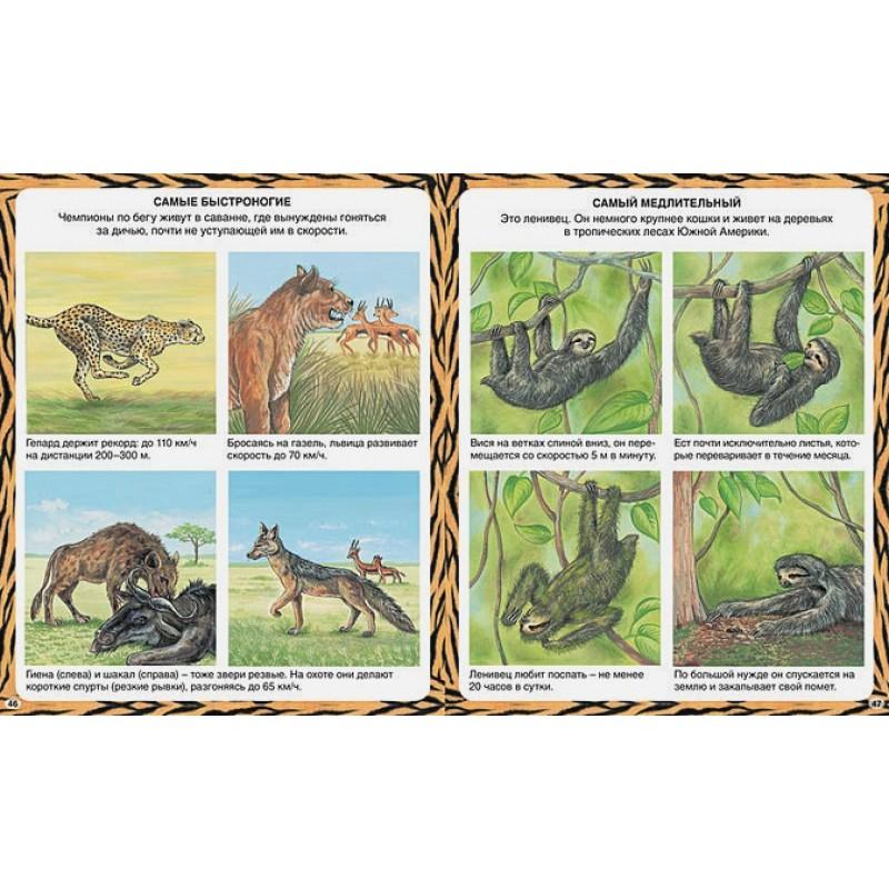 Животные-рекордсмены (фото 4)