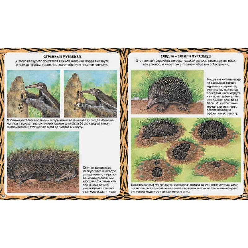 Животные-рекордсмены (фото 6)