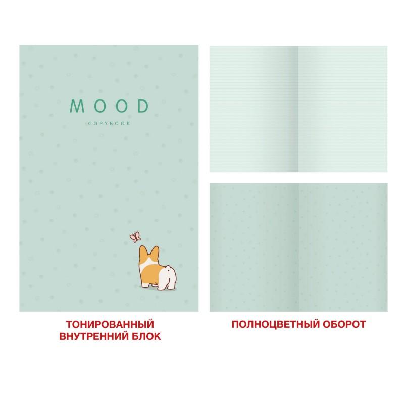 Тетрадь общая Mint, А4, 48 листов, дизайн 3