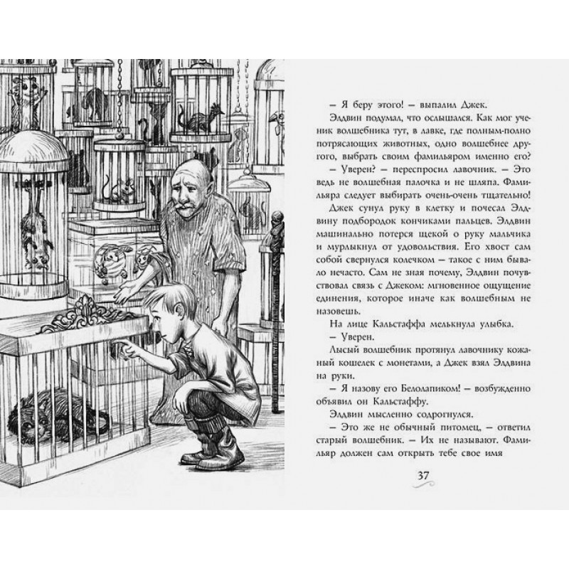 Фамильяры. Книга 1. Трое против ведьмы (фото 3)