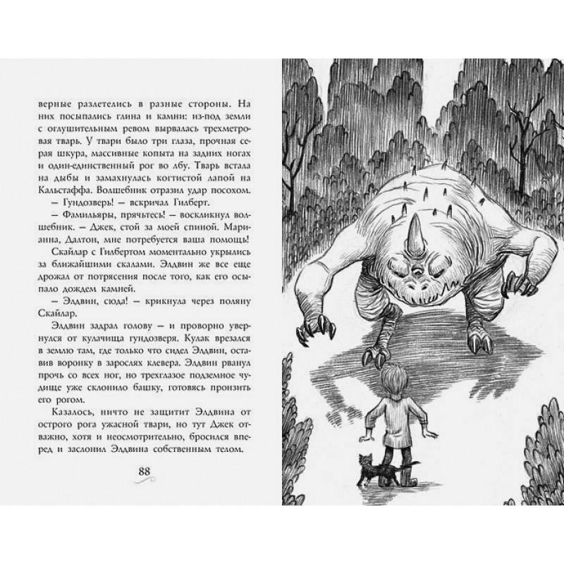 Фамильяры. Книга 1. Трое против ведьмы (фото 4)