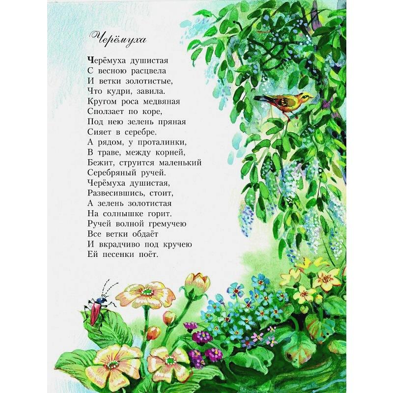 Стихи детям (ил. В. Канивца) (фото 8)