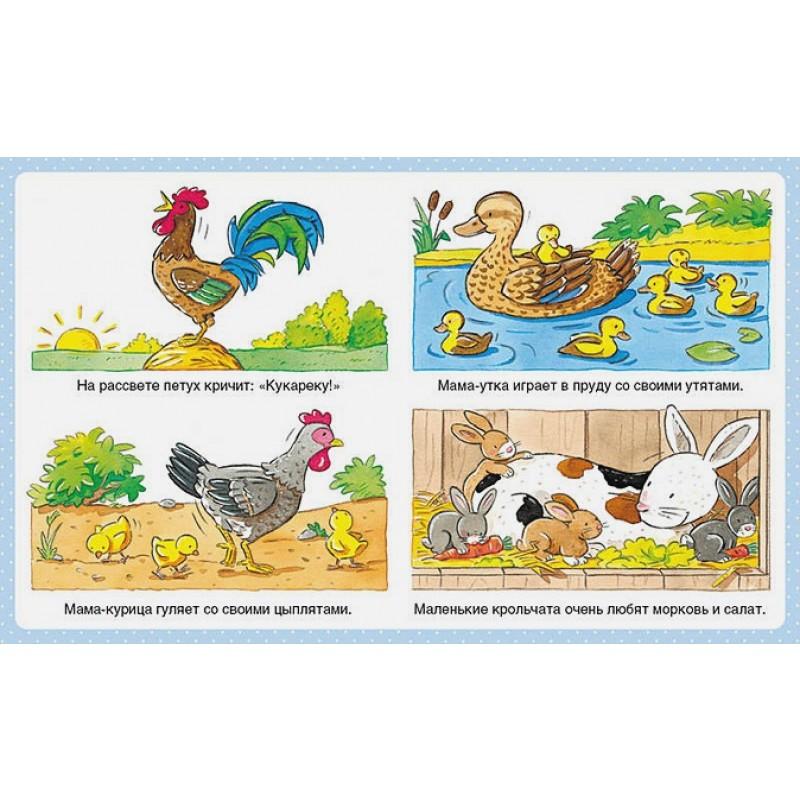 Животные (до 3-х лет, пухлая обл., импорт) (фото 2)