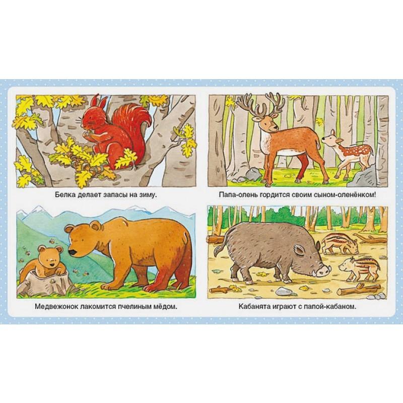 Животные (до 3-х лет, пухлая обл., импорт) (фото 3)