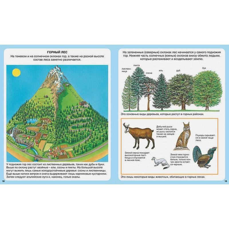 Жизнь леса (нов.оф.) (фото 2)