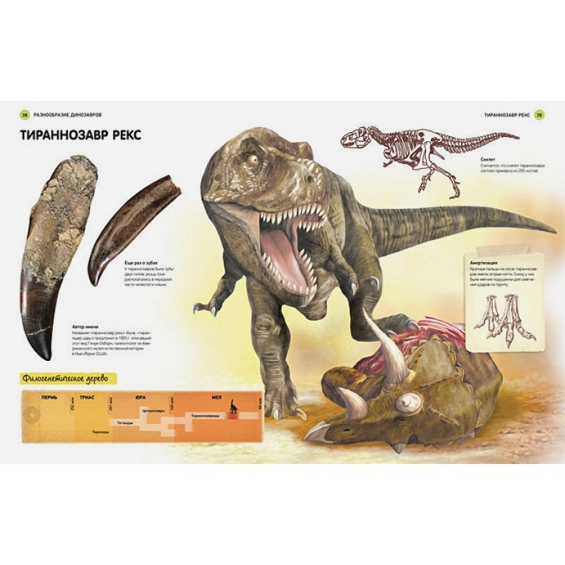Всё о динозаврах. Энциклопедия (фото 7)
